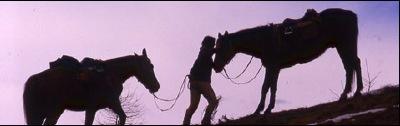 Lato di confine nord est for Rimodernato ranch di entrata del ranch